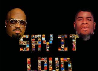 Say It Loud (Everybody Black Re-Flip) - Salaam Remi & Cee-Lo Green