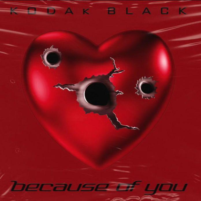 Because of You - Kodak Black