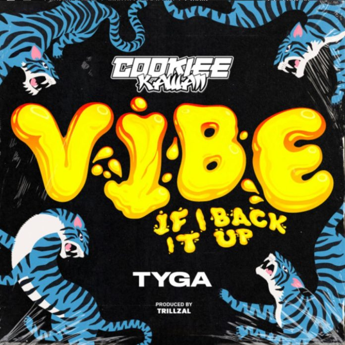 Vibe (If I Back It Up) (Remix) - Cookiee Kawaii Feat. Tyga