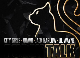 Pussy Talk (Remix) - City Girls, Quavo &Lil Wayne Feat. Jack Harlow