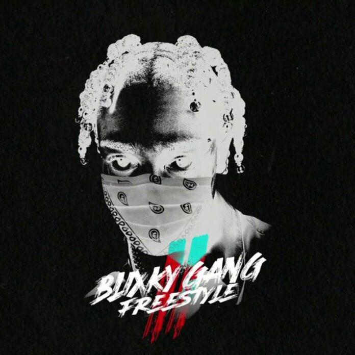 Blixky Gang Freestyle Pt. 2 - 22Gz