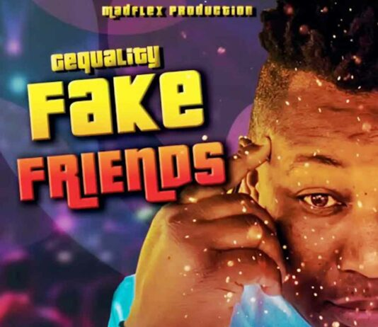 Fake Friends - GeQuality